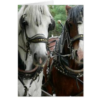 Traído por caballo tarjeta de felicitación