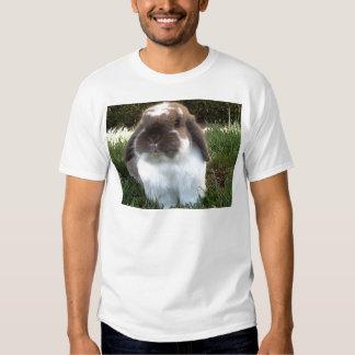 ¡Traiga un cierto furriness en su vida! Camisas