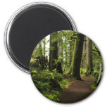 Trail Amongst Giants 2 Inch Round Magnet