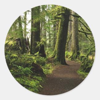 Trail Amongst Giants Classic Round Sticker