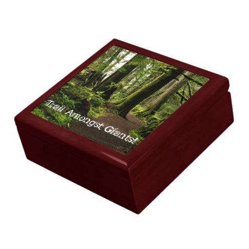 Trail Amongst Giants Gift Box