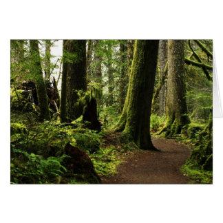 Trail Amongst Giants Greeting Card