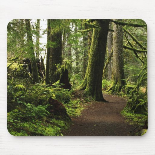 Trail Amongst Giants Mouse Pad