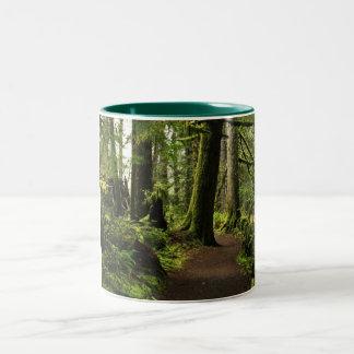 Trail Amongst Giants Two-Tone Coffee Mug