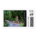 Trail Head Stamp