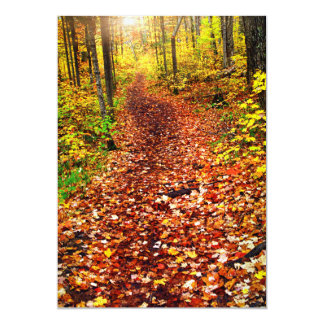 Trail in fall forest card