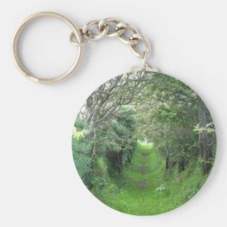 Trail In Ireland Keychains