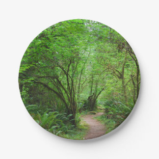 Trail in Redwood Forest Paper Plate