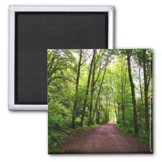 Trail in the Woods Refrigerator Magnets