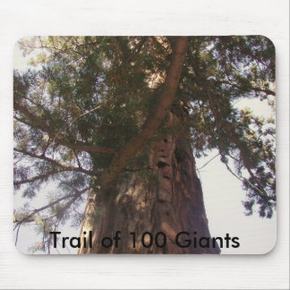 Trail of 100 Giants Mouse Pad