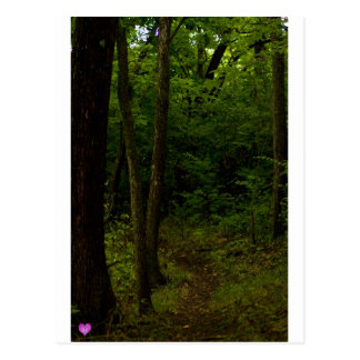 Trail Postcard