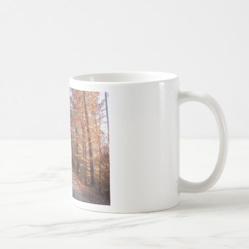 Trail Shelley Lake Raleigh NC During Fall Classic White Coffee Mug