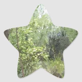 Trail Through the Trees Star Stickers