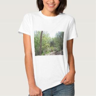 Trail Through the Trees T-Shirt