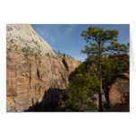 Trail to Angels Landing in Zion National Park Card