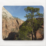 Trail to Angels Landing in Zion National Park Mouse Pad