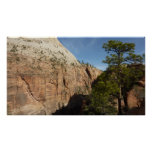 Trail to Angels Landing in Zion National Park Poster