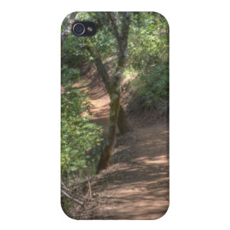Trail To Hidden Falls iPhone 4/4S Cases
