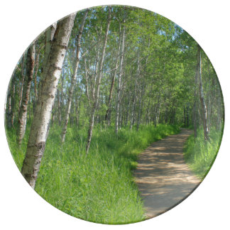 Trail Trough Aspens Plate