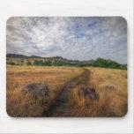 Trailhead, parque superior de Bidwell, Chico, Ca Alfombrilla De Ratones