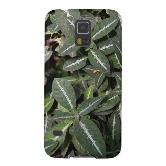 Trailing Velvet Plant Samsung Galaxy S5 Case