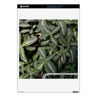 Trailing Velvet Plant Sony PlayStation 3 Slim Skin