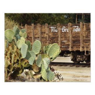 Train and Cacti Art Photo