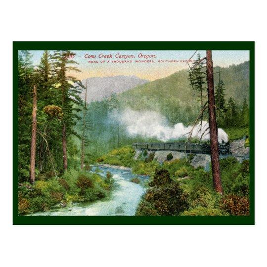 Train, Cow Creek Canyon, Oregon Vintage Postcard