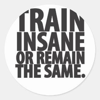 Train insane or remain the same classic round sticker