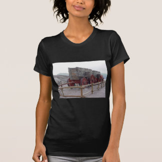 Train Old T-Shirt