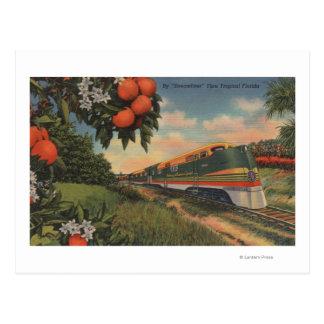 Train- Orange Blossom Special Postcard