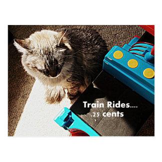 Train rides Cat Postcard