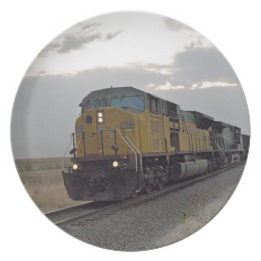 Train rolling through the Prairie Dinner Plates