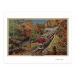 Train-The Thoroughbred, Monon Postcard