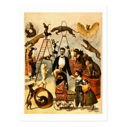 Trained Dog Act 1899 Vintage Circus Act Poster Postcard