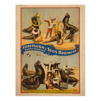 Trained Seals Circus Poster - Forepaugh & Sells Postcard