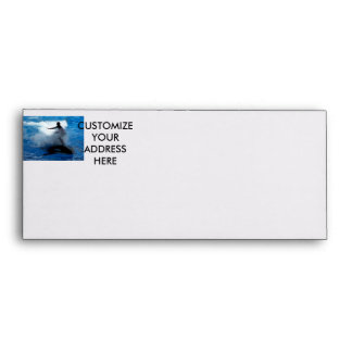 Trainer riding on killer whale orca photograph envelope