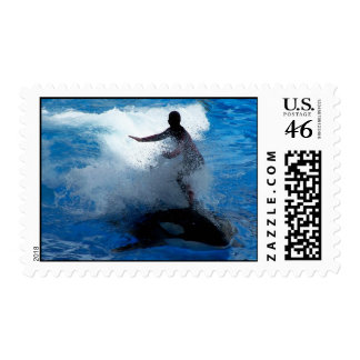 Trainer riding on killer whale orca photograph postage stamps