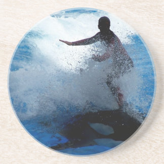Trainer riding on killer whale orca photograph sandstone coaster