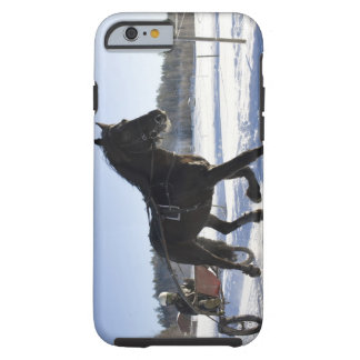 Training of horses in a wintry landscape iPhone 6 case
