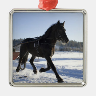 Training of horses in a wintry landscape, metal ornament