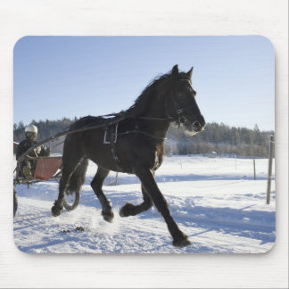 Training of horses in a wintry landscape, mousepad