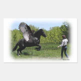 Training Pegasus Rectangular Sticker
