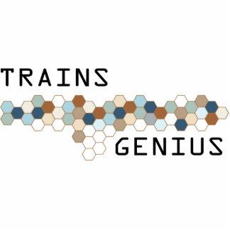 Trains Genius Photo Sculpture Ornament