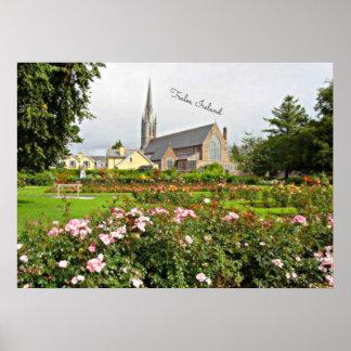 Tralee, rosaleda de Irlanda Póster