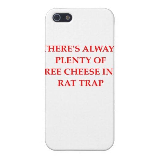 trampa de rata iPhone 5 coberturas
