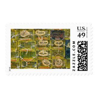 Trampas amarillas de la langosta apiladas en sellos