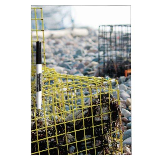 Trampas de la langosta en la playa rocosa pizarra