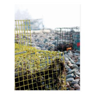 Trampas de la langosta en la playa rocosa tarjetas postales