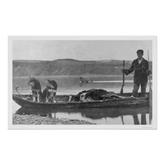 Trampero con las pieles y los perros Alaska 1906 Impresiones